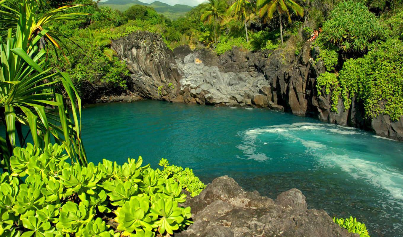 maui, venice, falls, часть, river, jungle, earth, que, los, гавайи,