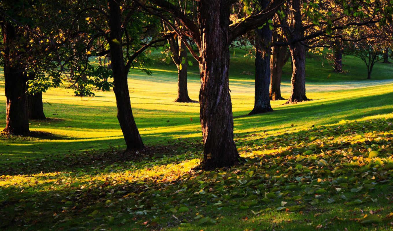 пейзажи, desktop, природой, прекрасной, картинка, качественные, wallbox,