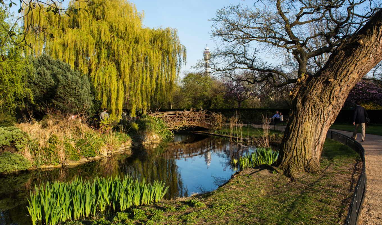 london, inglaterra, pantalla, англия, río, londre, parque, природа, дерево, park