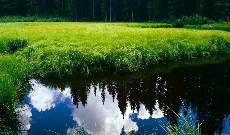 красивые, природы, девушек, природа, красивых, препятствий, взгляд, подборка, без,