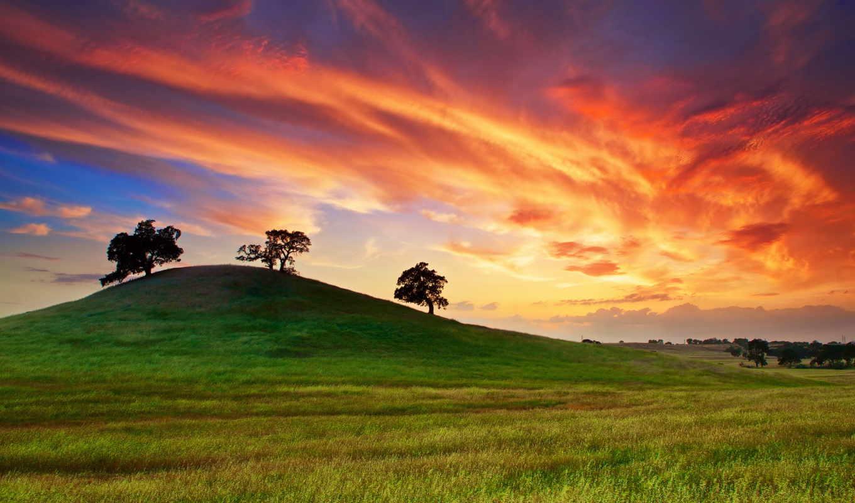 природа, май, красивые, закат, весна, деревя,