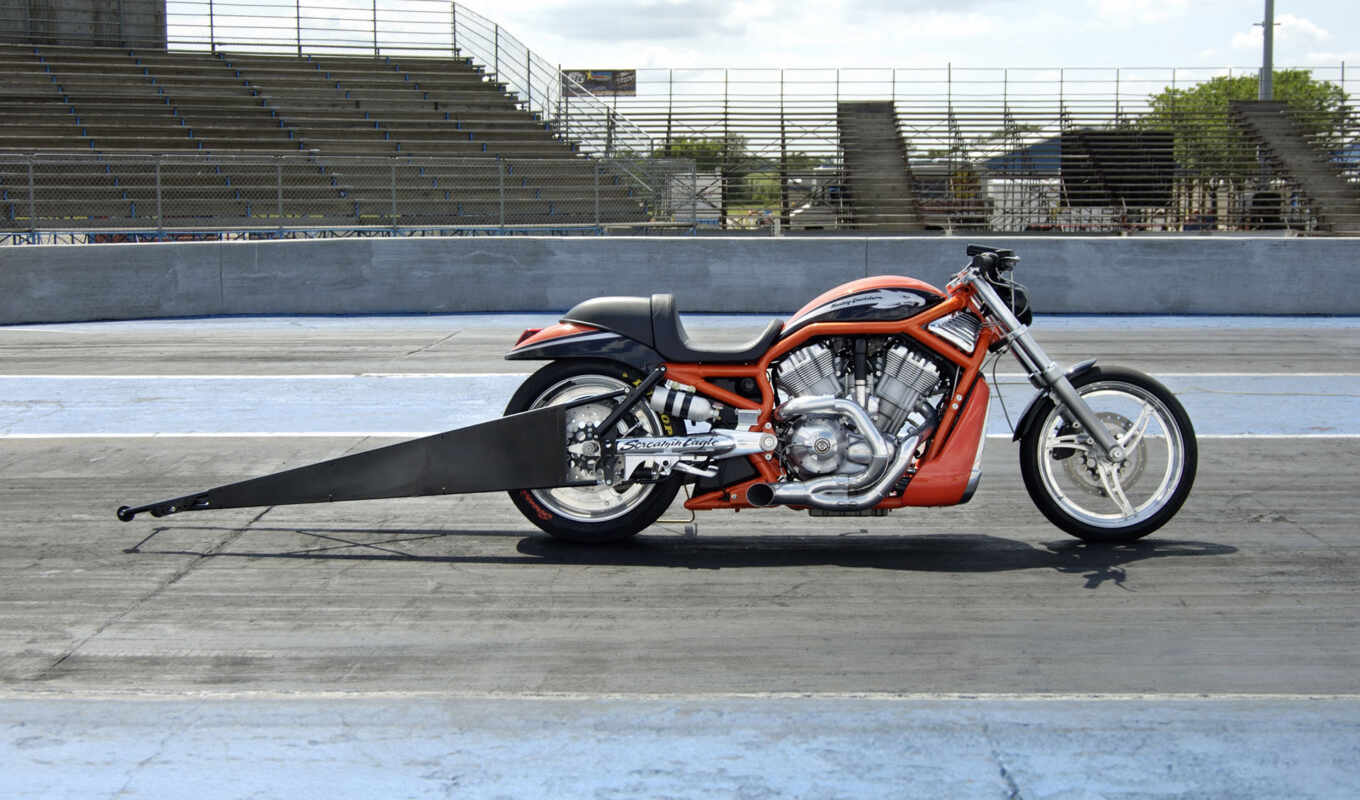 harley, davidson, eagle, rod, screamin, vrxse, destroyer,
