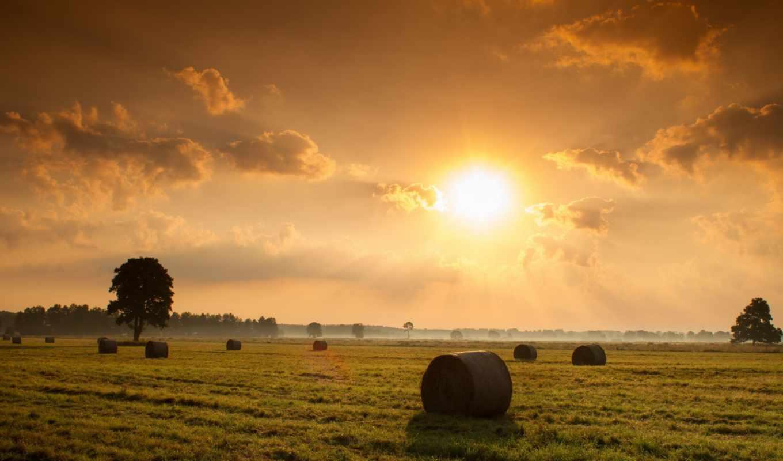 pole, seno, пейзаж, zakat, priroda,