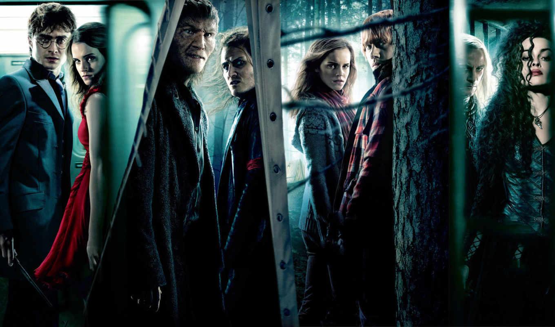 гарри, поттер, everything, поттера, персонажи, часть, hermione, akoola, персонаже,