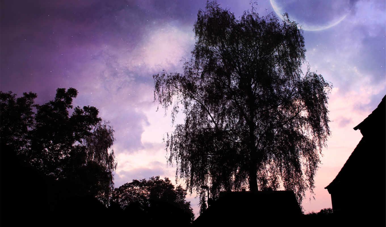 landscape, дерево, луна, trees, ночь, небо, shadow, house, дек, силуэт,