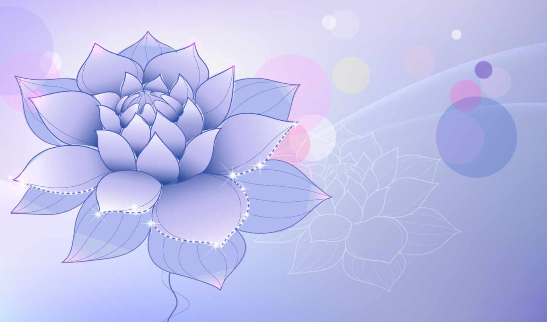 цветок, лотус, сиреневый,