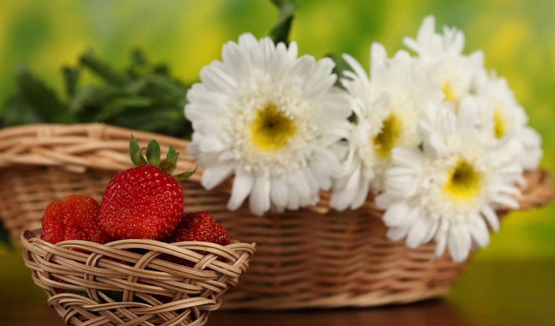 клубника, цветы, ромашки, корзина, ягоды,