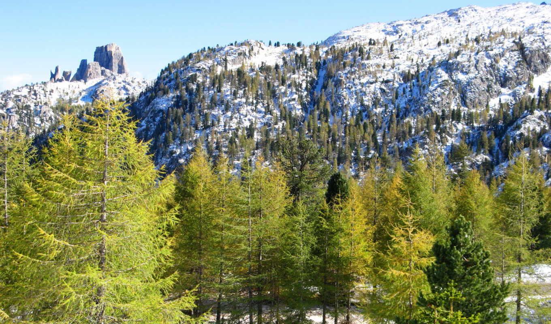 landscape, природа, истинном, размере, деревья, города, дома, альпы, обою,