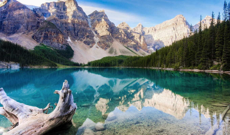 канада, canadá, au, landscape, miel,
