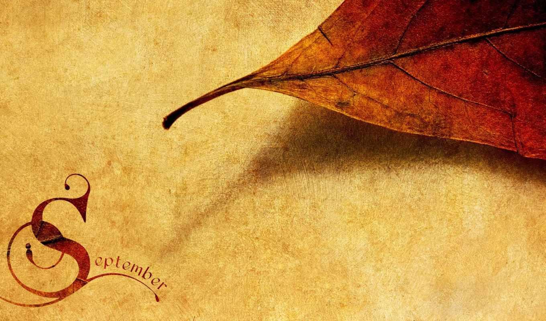 осень, posted, сентябрь, листья, настроение, текстура, золотая,