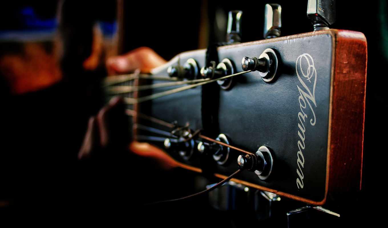 ,гриф, музыкальный инструмент, струнный инструмент, гитара, музыка, plucked string instruments, электронный инструмент, электрогитара, гитарный усилитель, струнный инструмент, акустическая гитара,