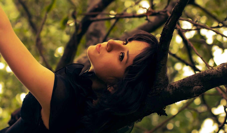 девушка, дерево, листья, платье, ветки, дереве, взгляд,