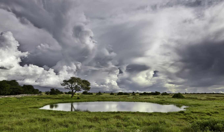 небо, oblaka, природа, луга, landscape, трава, trees, тучи, пасмурно, картинка, хмурое,