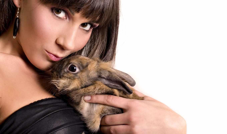 кролик, девушка,
