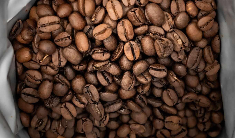 coffee, фото, bean