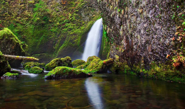 деревя, serenity, travel, кустарники, холмы, обои, свечение, landscape, ночь, боке, поля,