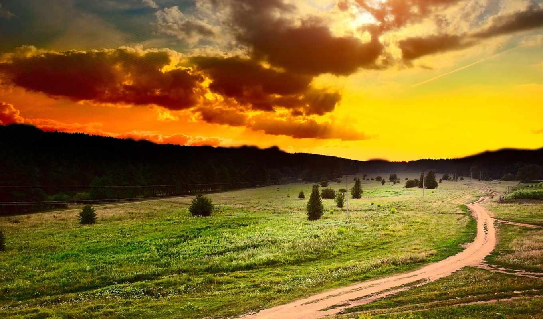 закат, поле, небо, sun, oblaka, trees, тучи, лес,