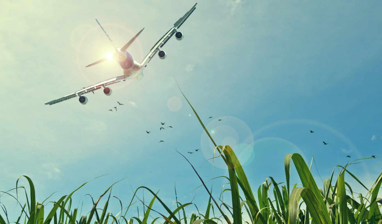 купить, you, продать, можно, bewilderment, flights,