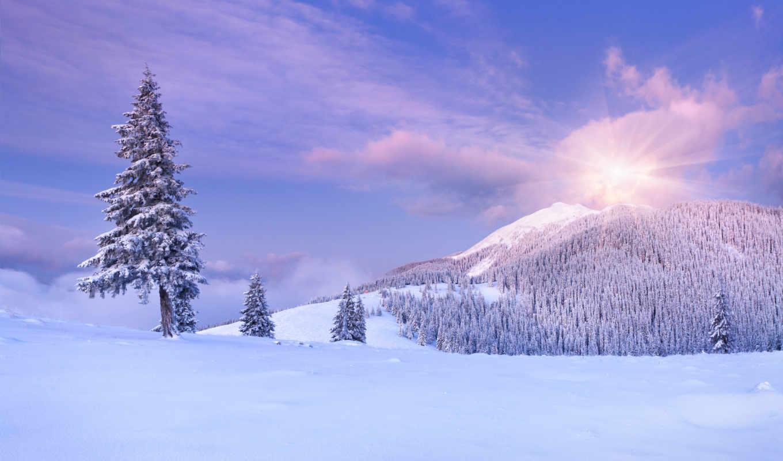 фотопанно, снег, hiver, winter, sale, фотообоев, manufacture, фотообои, беларуси, самые, доставка,