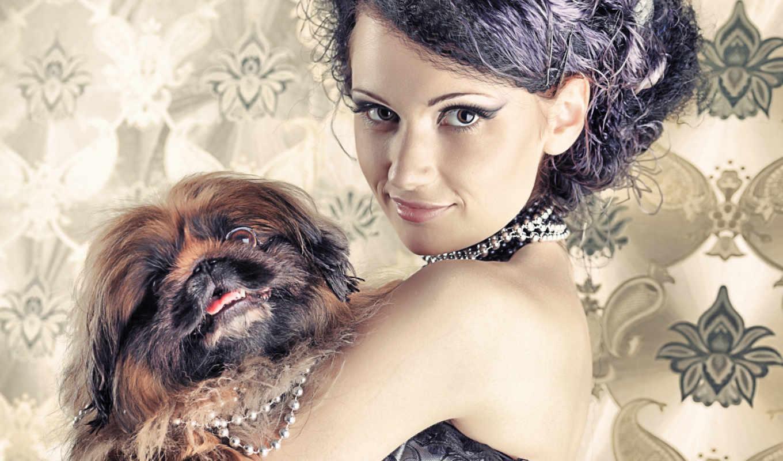девушка, собачкой, красивая, собака, stock, фото, руках,