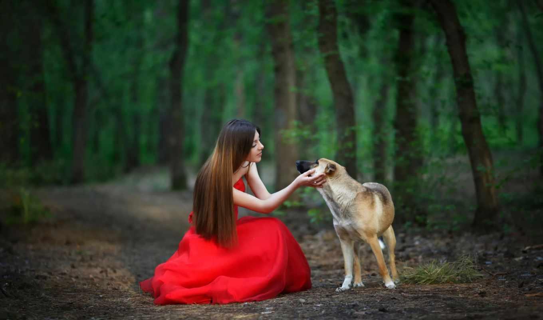 девушка, платье, красное, собака, лес