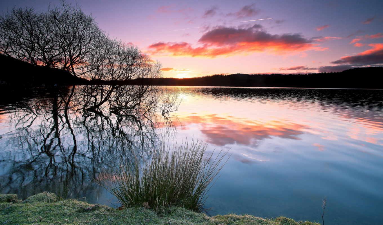 water, дерево, отражение, закат, trees, озеро, небо,