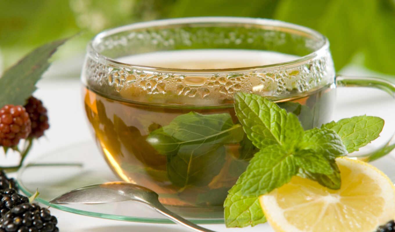 чая, палуба, колл, крымский, напиток, superprodukt, отличаться, pitatelnost, usvoyaemost, они, утро