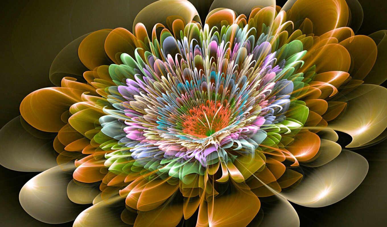 цветы, palm, fractal, sabal, выдержка, картинка, абстракция, art, purple, oir