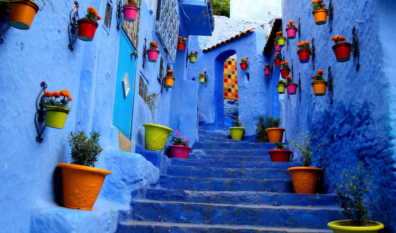 aruba, штуки, краска, совершенно, беслатно, улица, можно, тегу, их, добавляются,