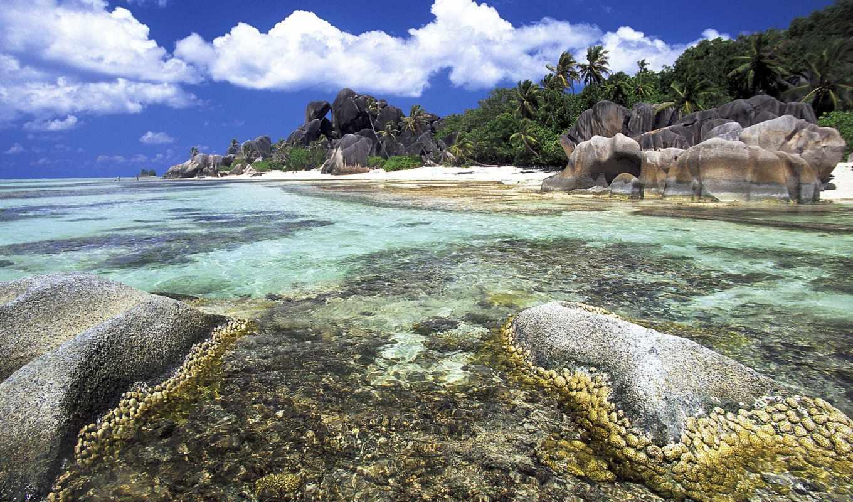 пляж, море, природа, берег, beaches, картинка, clouds, blue,