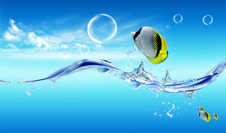 креатив, воды, вытащенная, fuera, графика, peces, fish,
