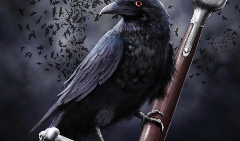 ворона, fantasy, art, меч, black, mech, тучи, ручка, воронье,