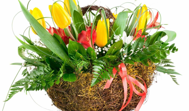 цветы, весенние, белом, fone, букеты, flowers, фотосток, весенних, весна, цветочные,