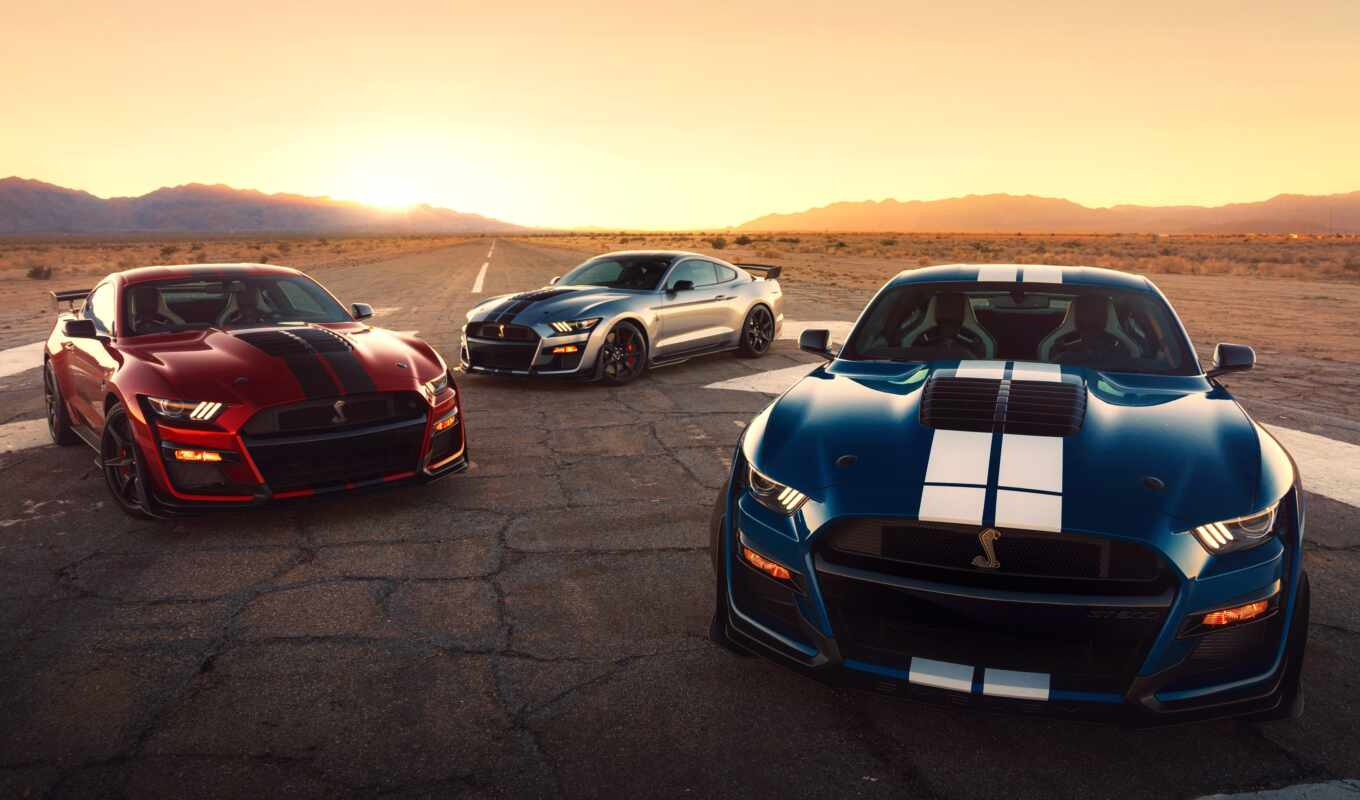ford, shelby, mustang, fast, new, новинка, car, sale, automotive