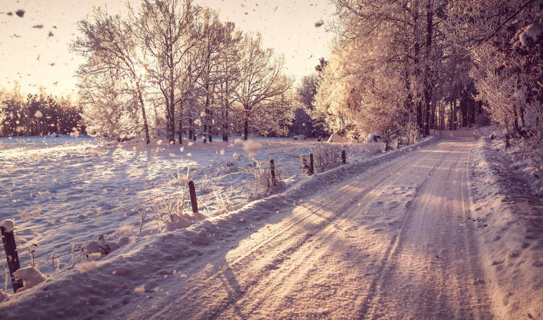 зима, снег, лес, пейзаж, природа, деревья,