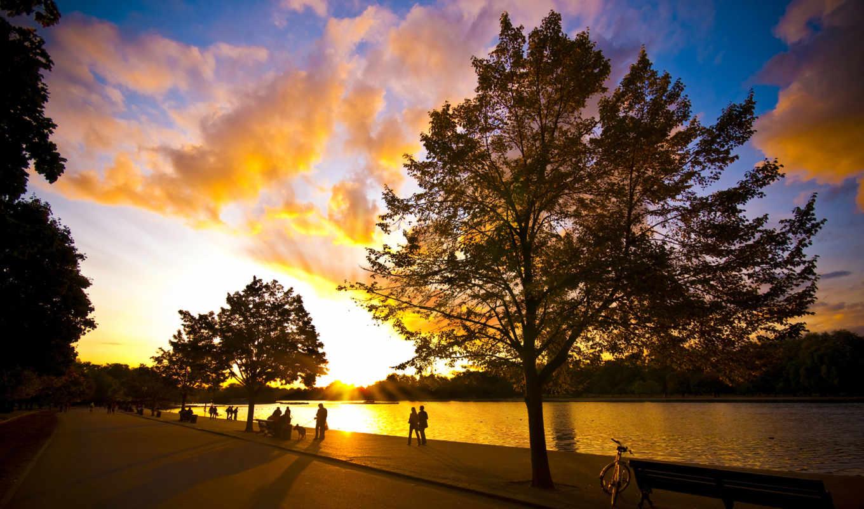 photography, autumn, wallpaper, wonderful, homepage,