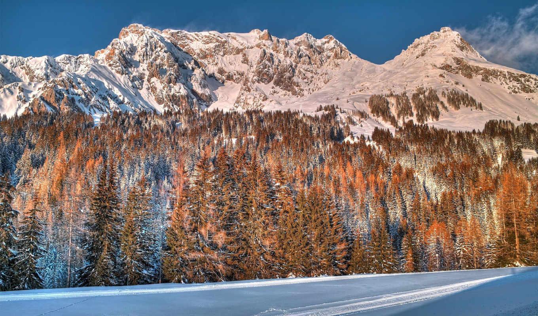 winter, янв, лес, снег, горы,