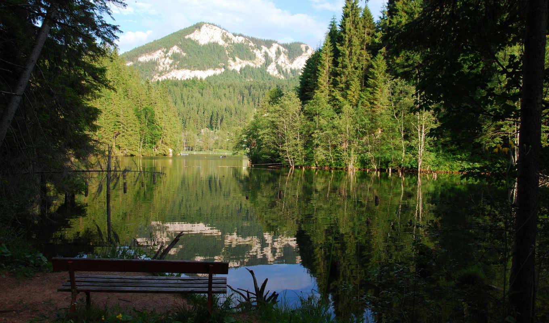 озеро, скамейка, горы, отражение, лес,