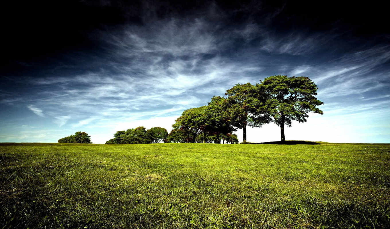 amazing, best, природа,