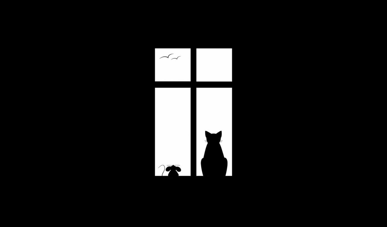 окно, кот, птицы, мышь, друзья, friendship, минимализм,