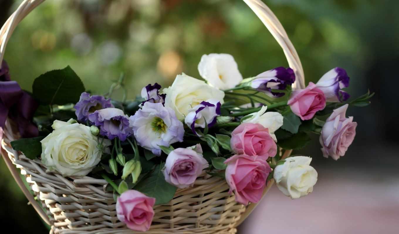życzenia, urodzinowe, dziękuje, imieninowe, dziękuję, zyczenia, serdecznie,