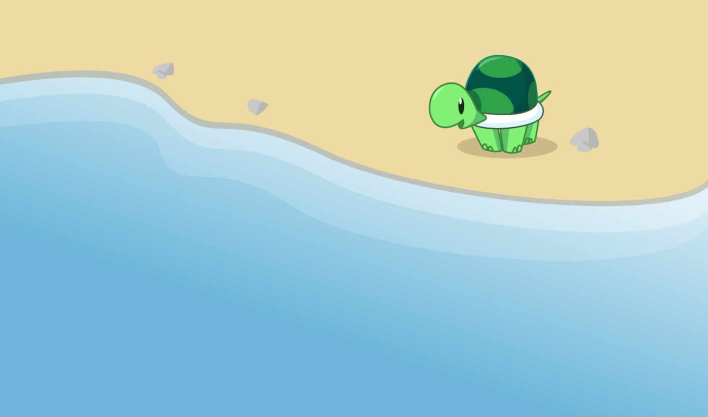 pack, full, черепаха,