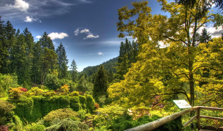 природа, сады, канада, butchart, victoria, пруд,