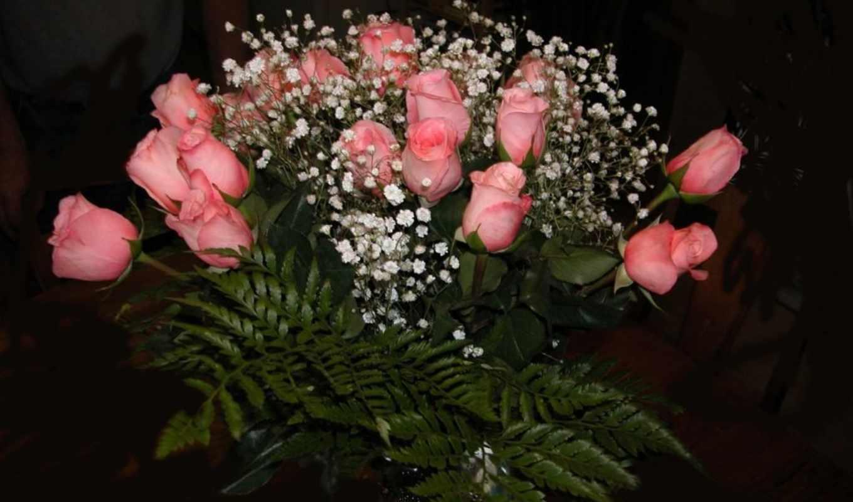 букет, роз, розы, роза, цветов, мар, карликовая, фотографий,