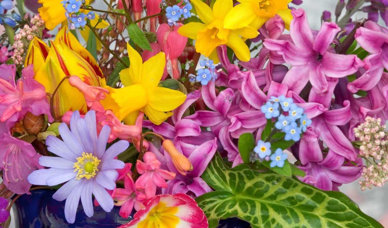 рождения, днем, цветы, цветов, поздравление, поздравления,