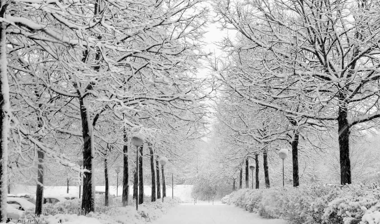 снег, winter, деревя, аллея, park, lantern,