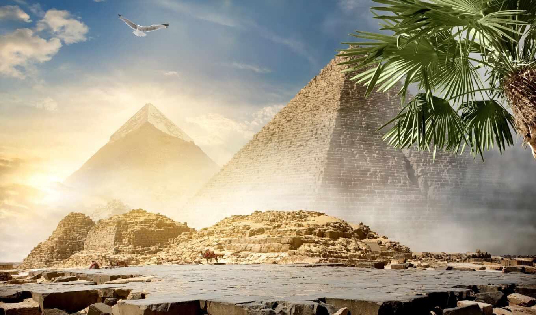 pyramids, пирамида, египет, пустыня, фото, близко, stock, camel, египетский,