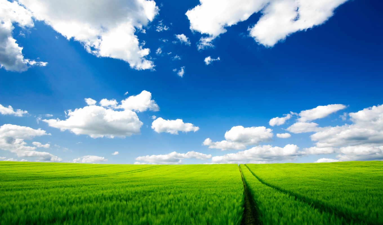 природа, mobile, desktop, full,