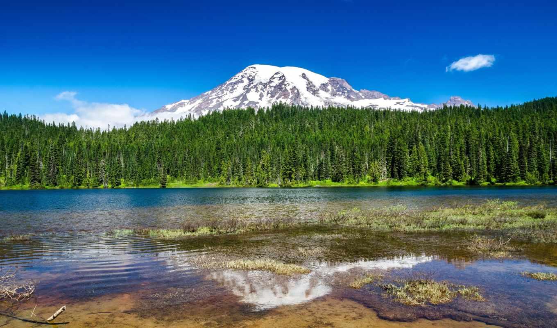 taiga, река, горы, небо, лес, зелёный, снег, water, берег,