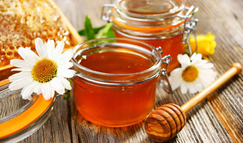 мед, цветы, ромашки, только, ложка,